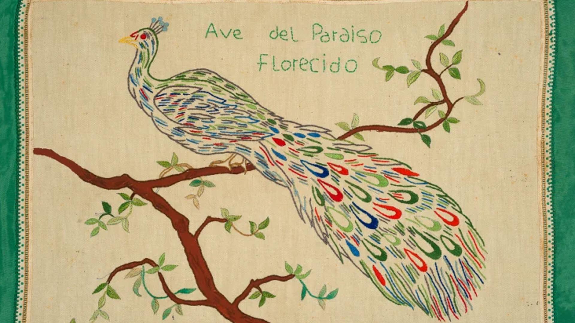 Ave del Paraiso Florecido, c. 1995