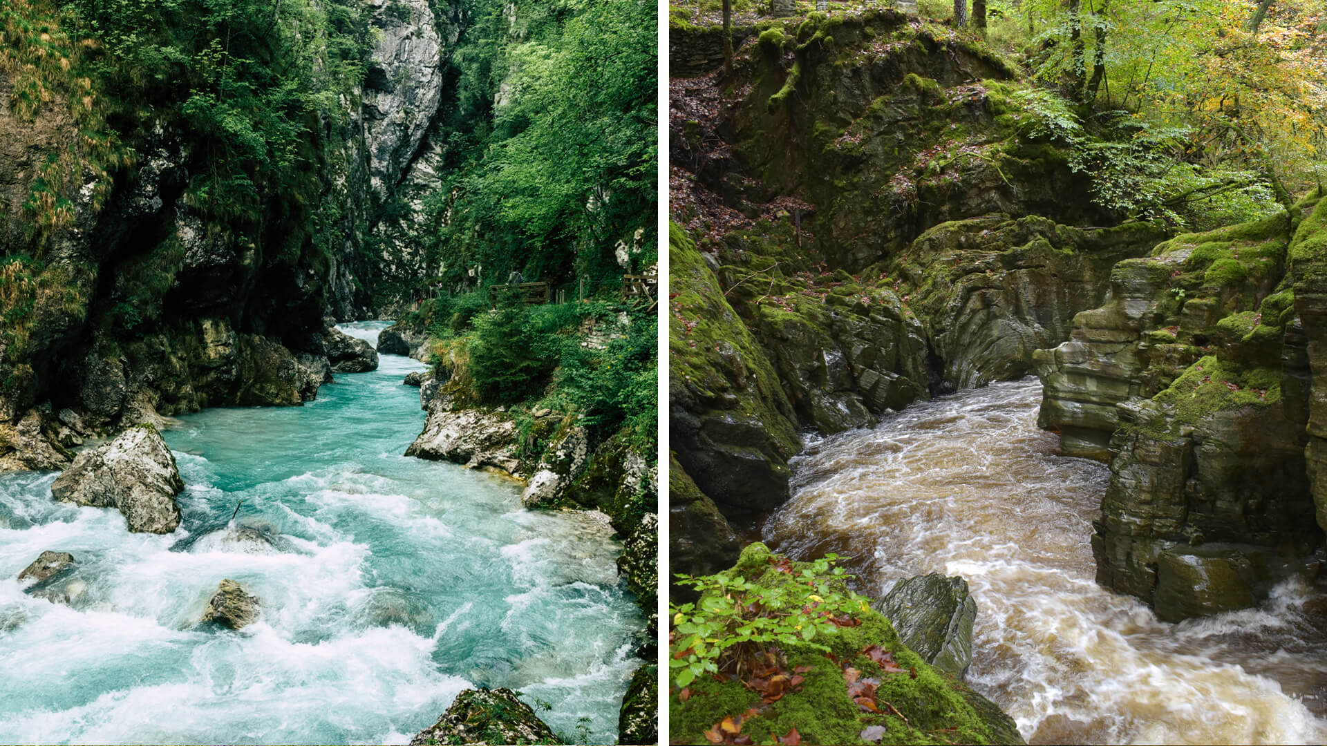 Slovenian Forests & Lakes Road Trip vs. Welsh Forests and Lakes Road Trip
