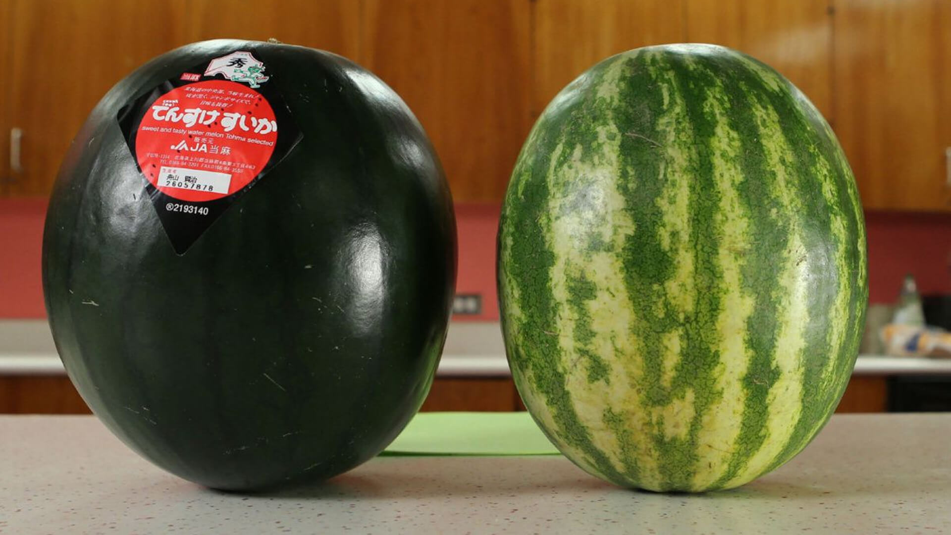 Black Densuke Watermelon